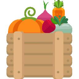 Setor Frutas e Legumes